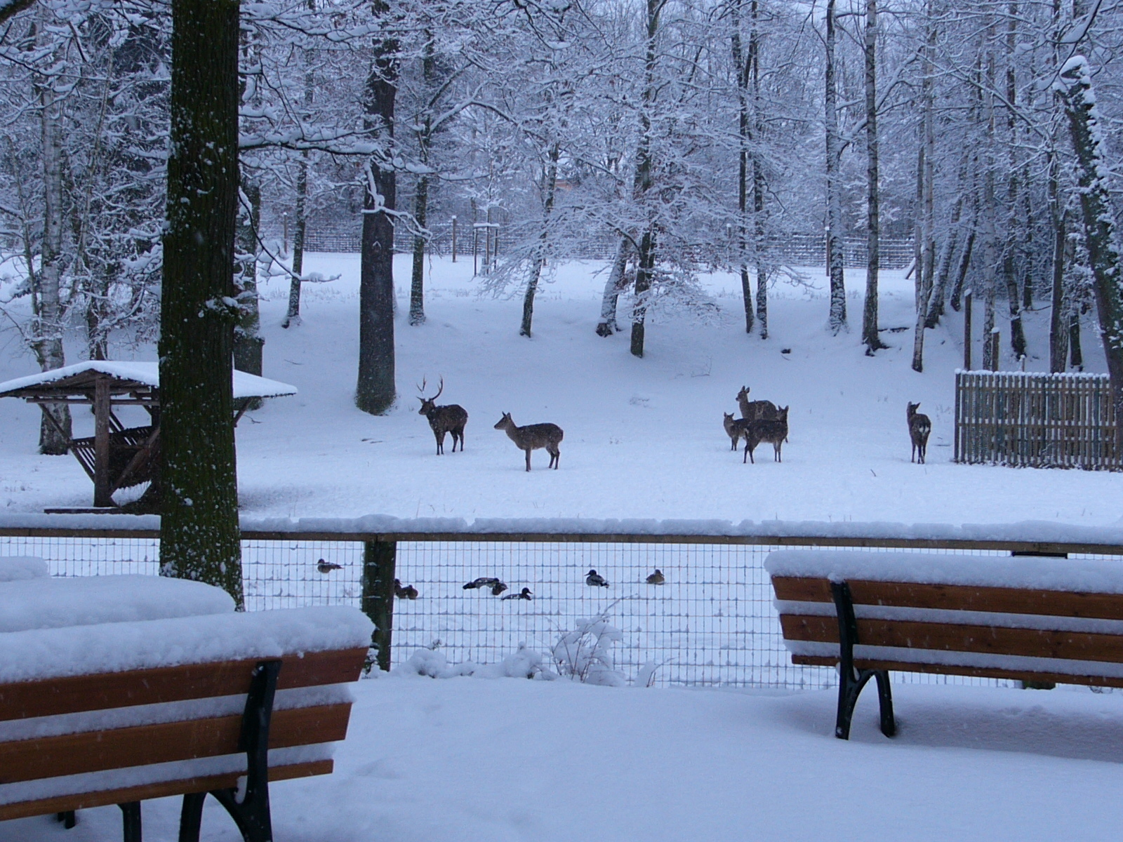 Winterführung
